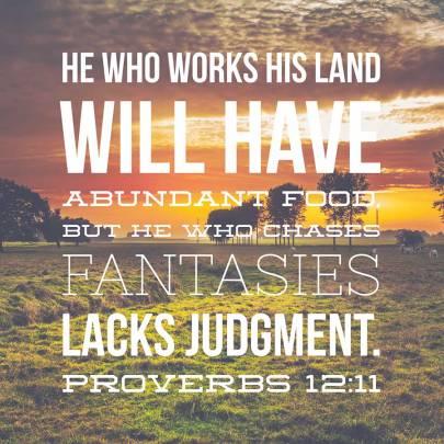 proverbs 1211